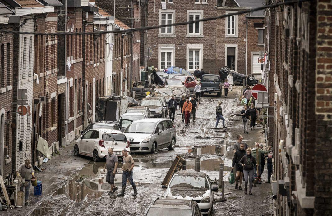 belgium plimmires